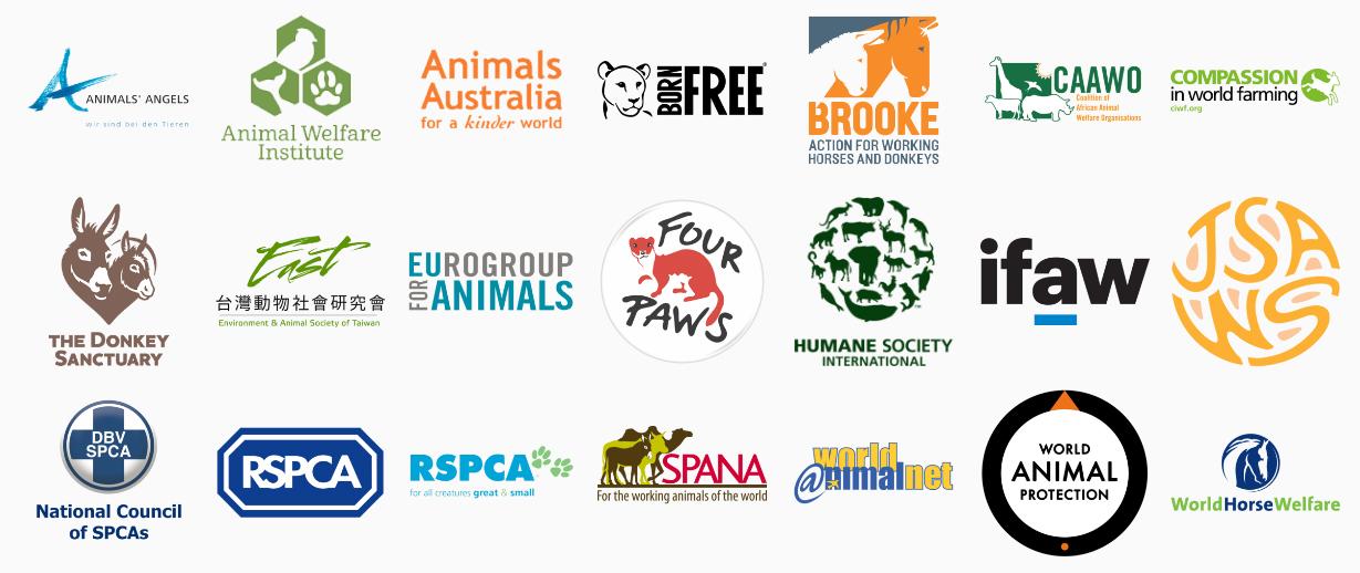 شکل 1 اعضای سازمان جهانی رفاه حیوانات (ICFAW)